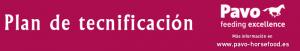 PLAN DE TECNIFICACIÓN DE DOMA CLÁSICA