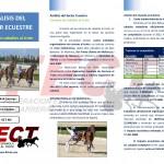 Analisis Sector Ecuestre_TROTE_Pagina_1