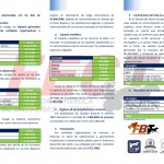 Analisis Sector Ecuestre_TROTE_Pagina_2