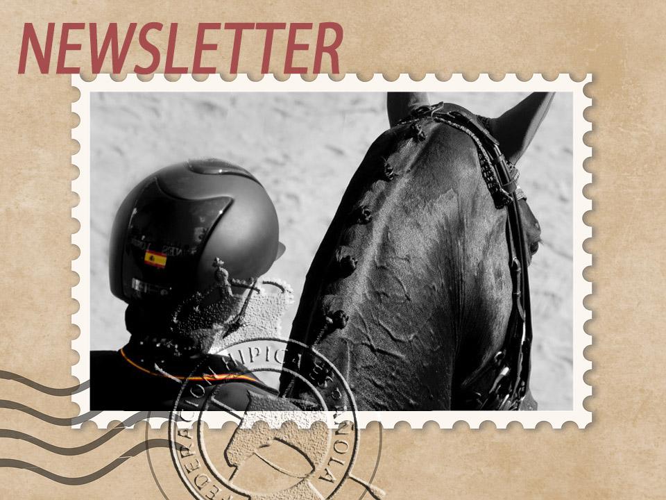 img_newsletter
