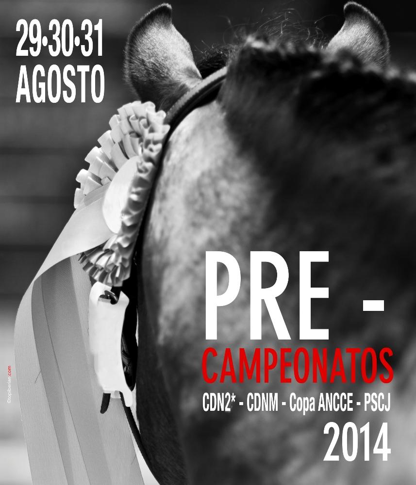 cartel-Pre-Campeonatos-Menores