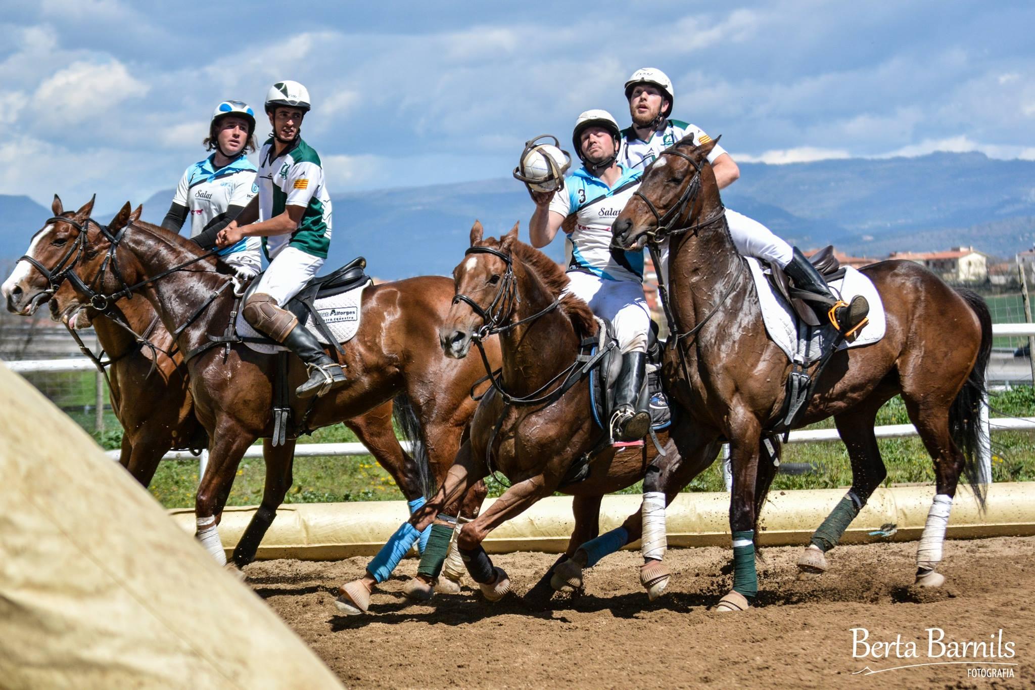 foto horseballl