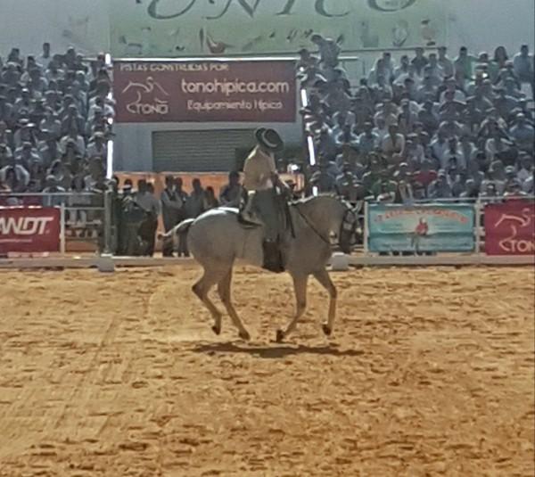 "Jonatan Peña y ""Talavante"" Campeón de España de Doma Vaquera 2017"