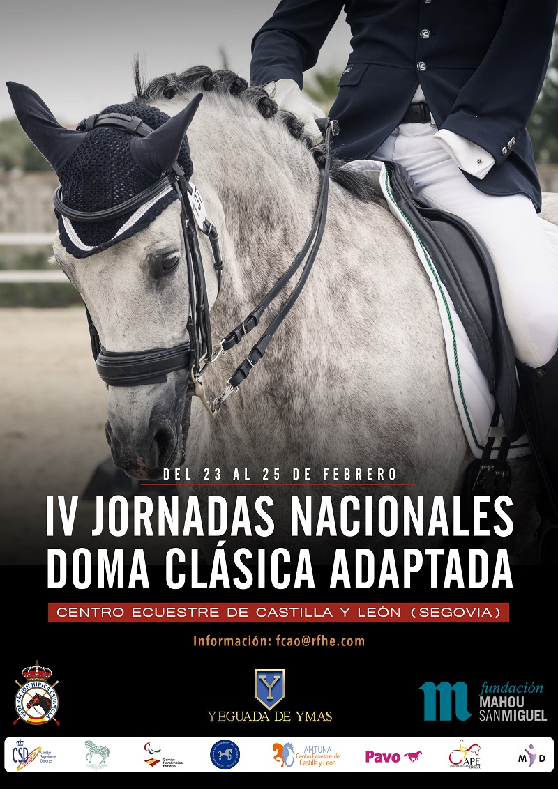 Jornadas IV