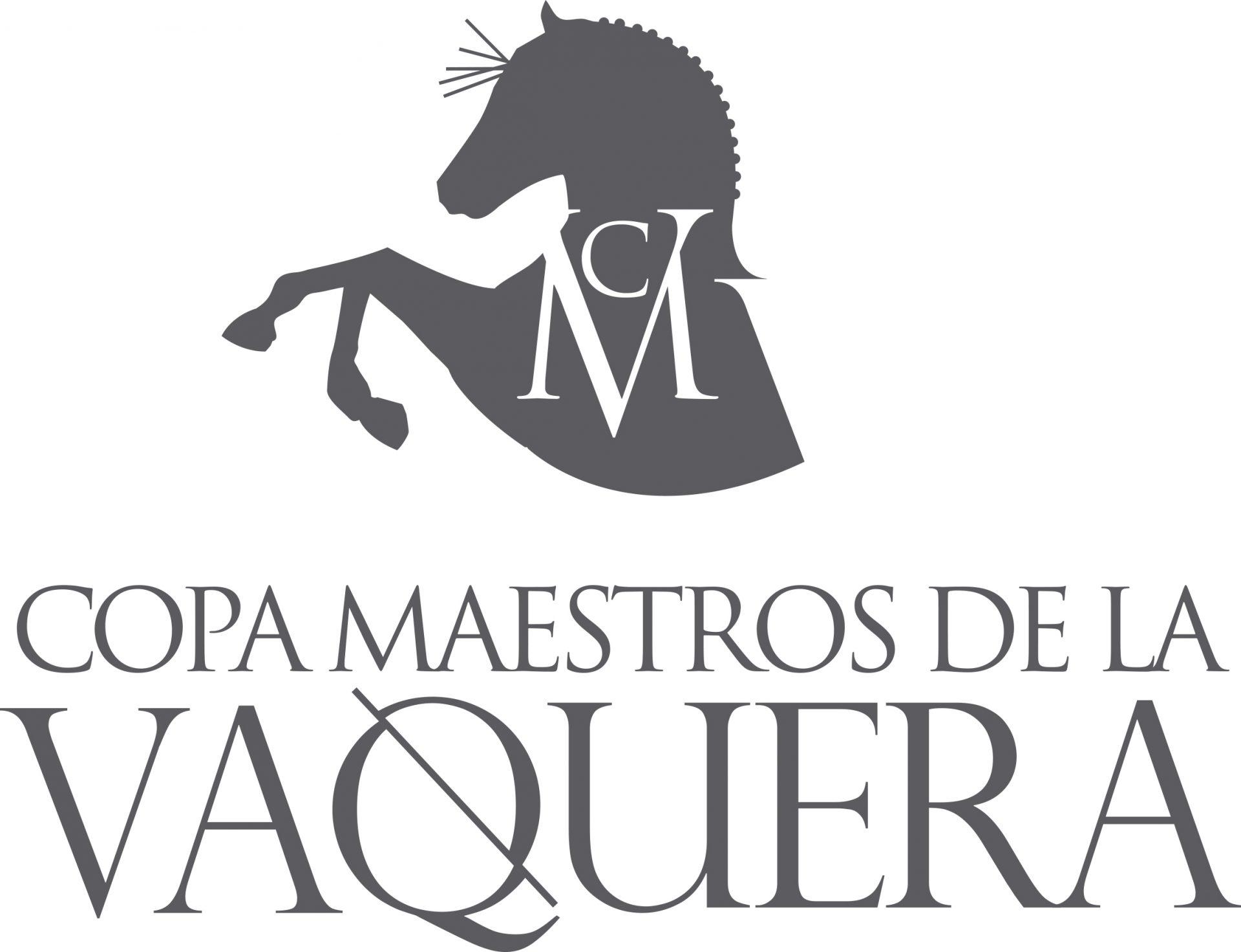 logo CMV Gris (Vertical)