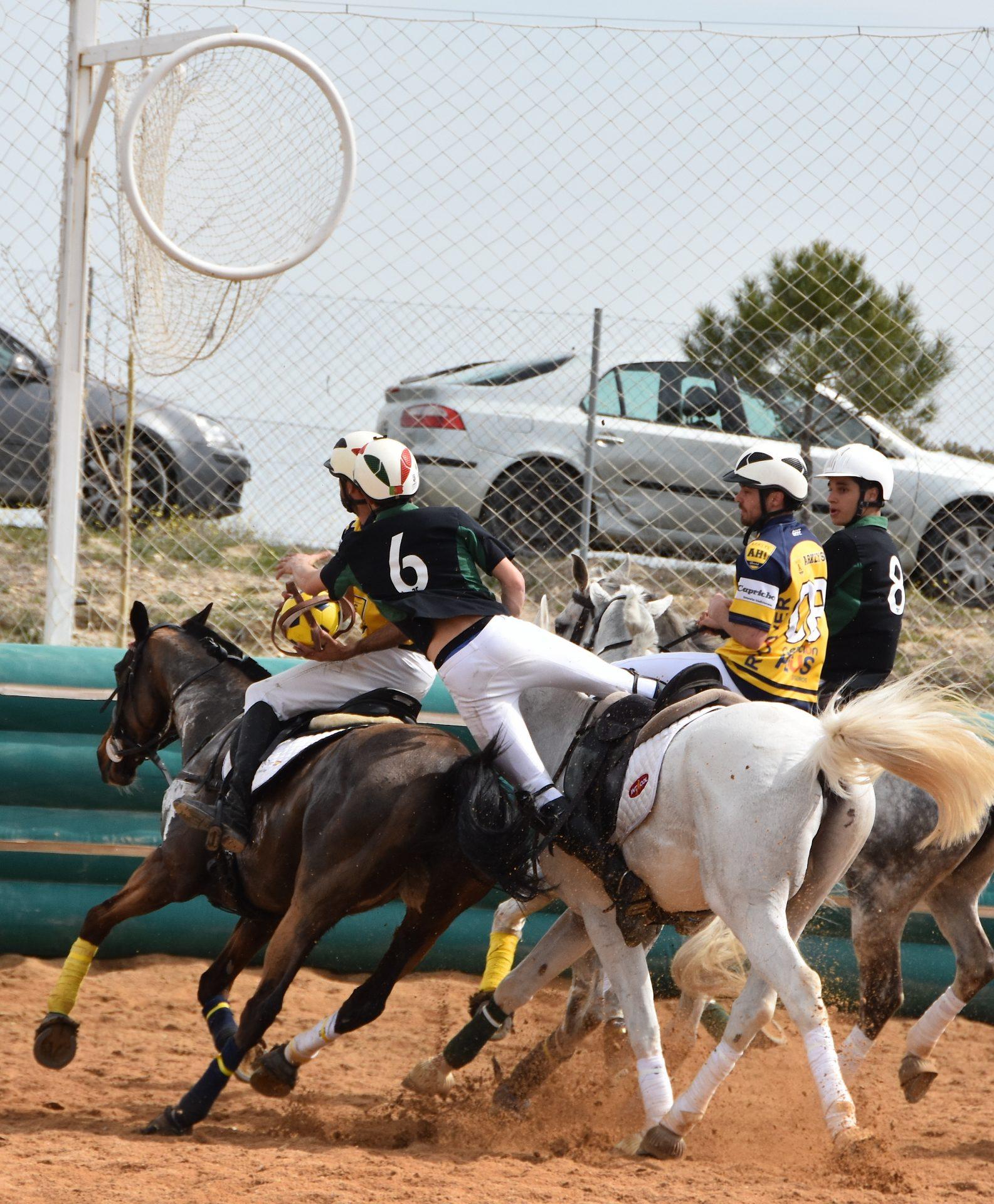 horseball gb 2