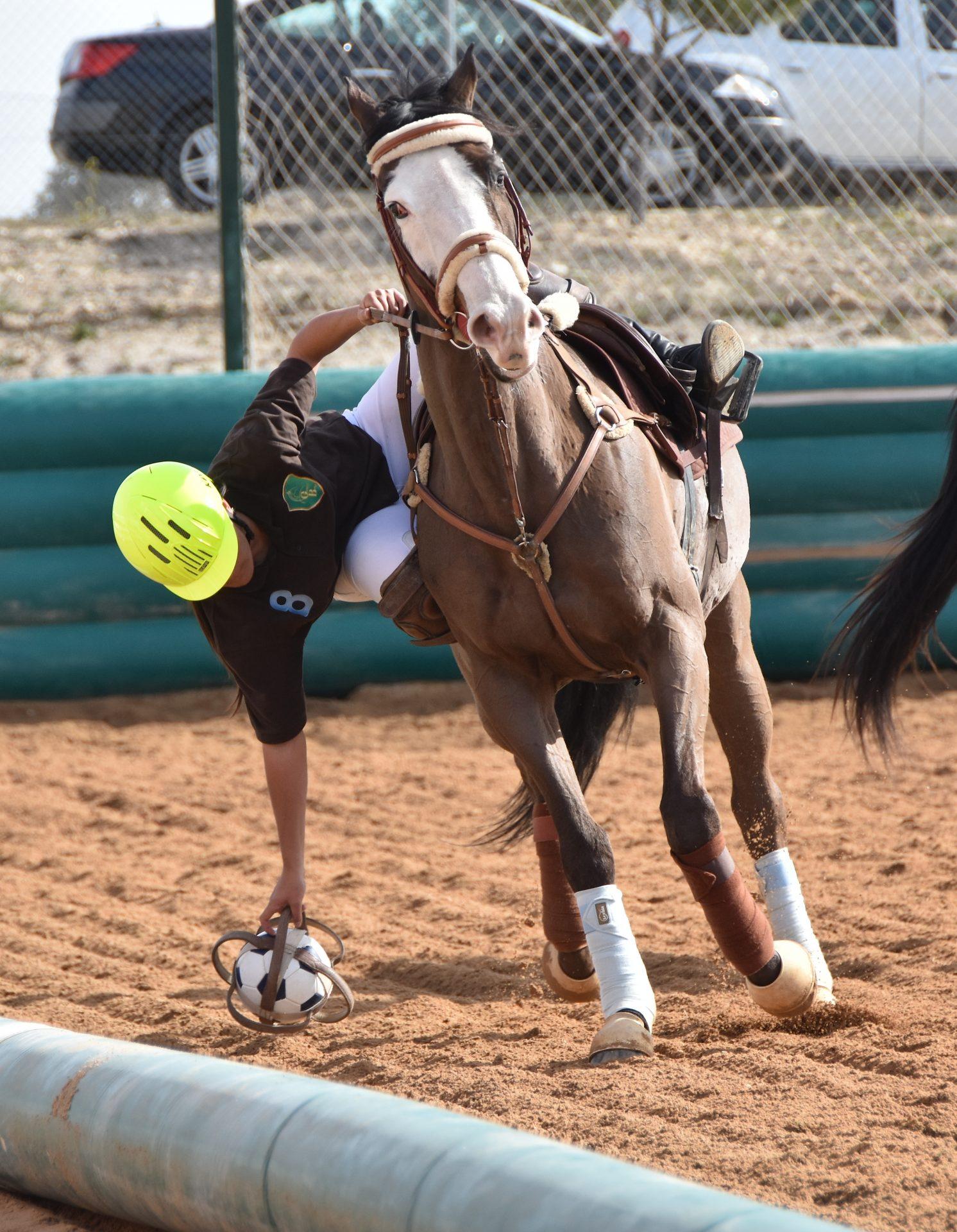 horseball gb 3